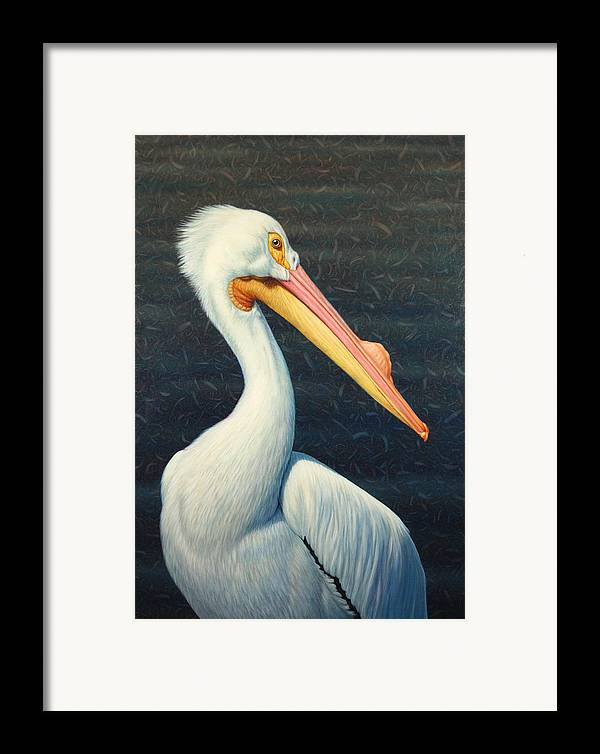 Pelican Framed Print featuring the painting A Great White American Pelican by James W Johnson