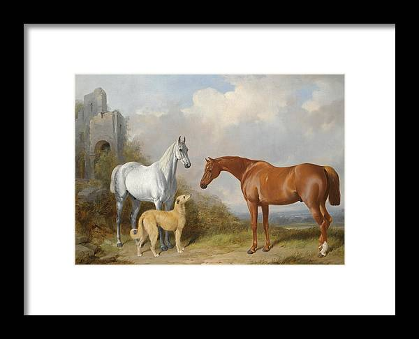 William Barraud Framed Print featuring the painting A Grey And A Chestnut Hunter With A Deerhound by William Barraud