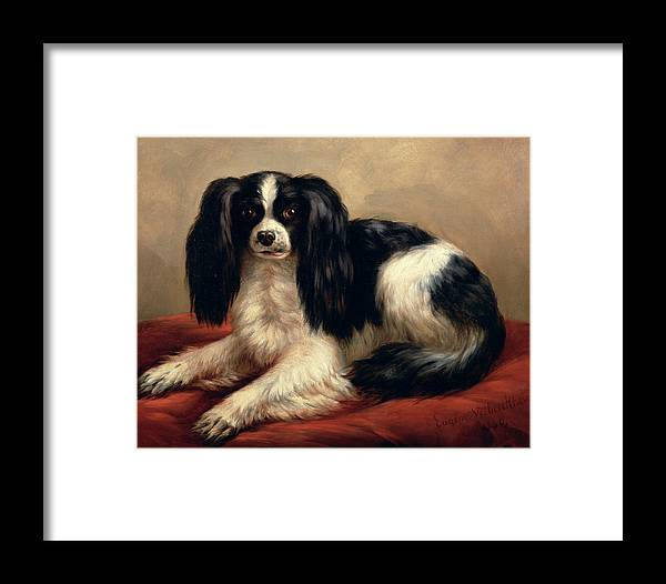 A King Charles Spaniel Seated On A Red Cushion Framed Print featuring the painting A King Charles Spaniel Seated On A Red Cushion by Eugene Joseph Verboeckhoven