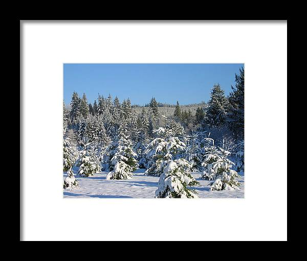 Framed Print featuring the digital art A Light Snow Dusting by Barb Morton