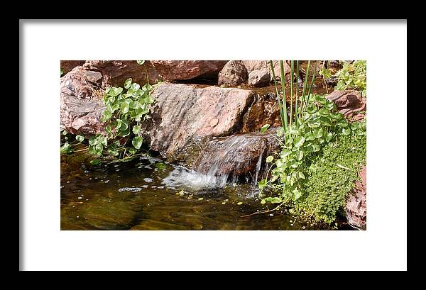 Waterfall Framed Print featuring the photograph A Little Waterfall by Susan Heller