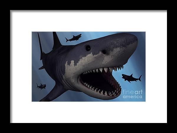 8fa2c60f0c A Megalodon Shark From The Cenozoic Era Framed Print by Mark Stevenson