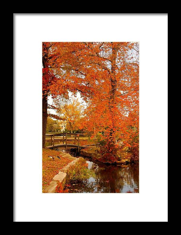 New Jersey Framed Print featuring the photograph A Morning In Autumn - Lake Carasaljo by Angie Tirado