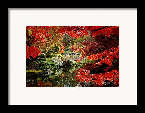 Landscape Framed Print featuring the photograph A Most Beautiful Spot by Jon Holiday
