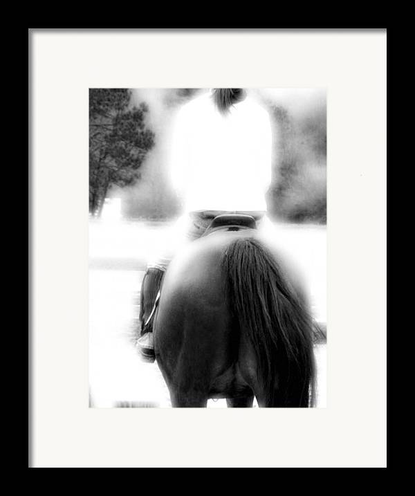 Horse Framed Print featuring the photograph A Pair Of Tails by Donna Thomas
