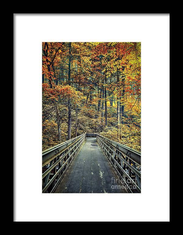Kremsdorf Framed Print featuring the photograph A Path Into Autumn by Evelina Kremsdorf