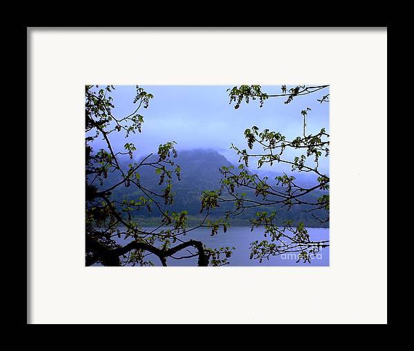 Multnomah Falls Framed Print featuring the photograph A Peek At Washington by PJ Cloud