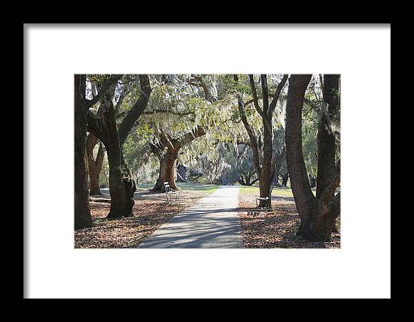 Fine Art Framed Print featuring the photograph A Place For Contemplation by Suzanne Gaff