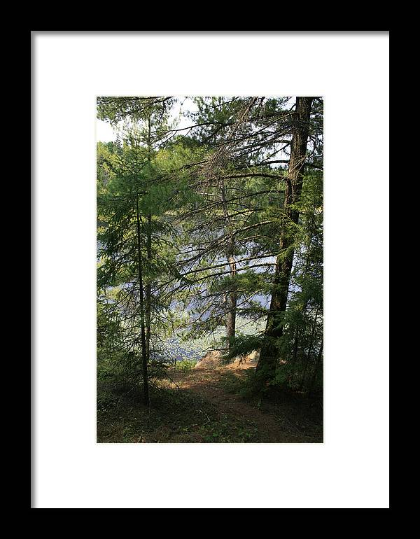Photography Framed Print featuring the photograph A Place To Wander by Alan Rutherford
