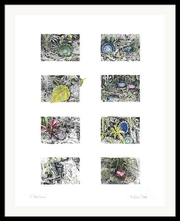 Tropical Framed Print featuring the drawing A Potters Garden by Kerryn Madsen-Pietsch