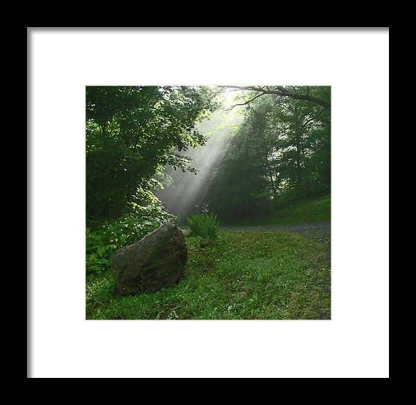 Nature Framed Print featuring the photograph A Ray Of Hope by Jester Rawls