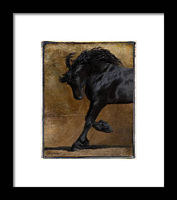 Horse Framed Print featuring the photograph A Regal Bow by Jean Hildebrant