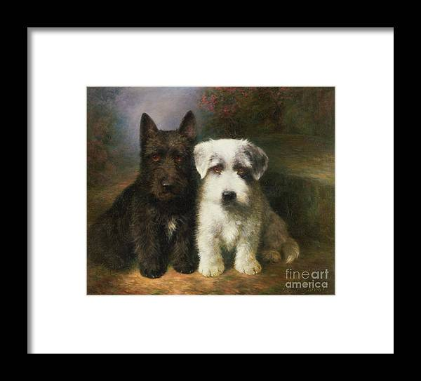 Dogs Framed Print featuring the painting A Scottish And A Sealyham Terrier by Lilian Cheviot