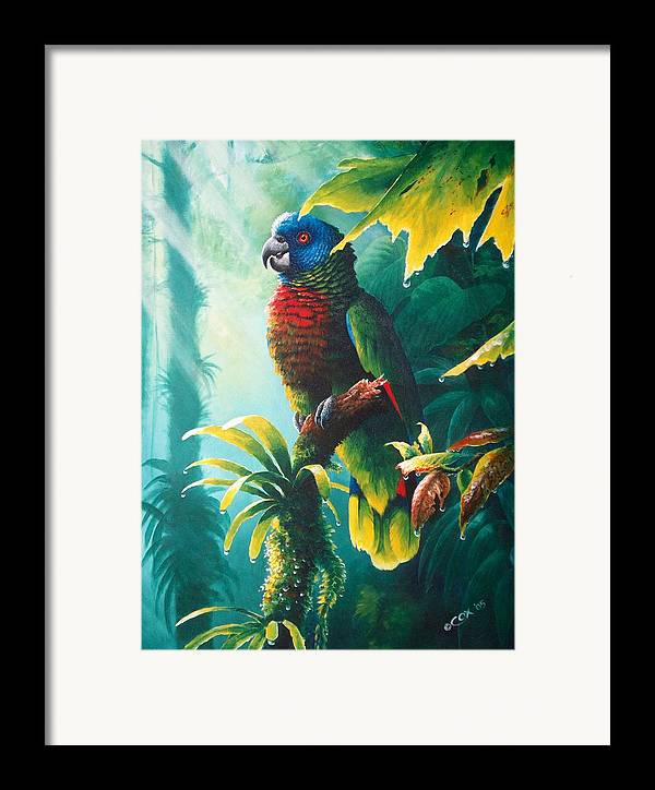 Chris Cox Framed Print featuring the painting A Shady Spot - St. Lucia Parrot by Christopher Cox