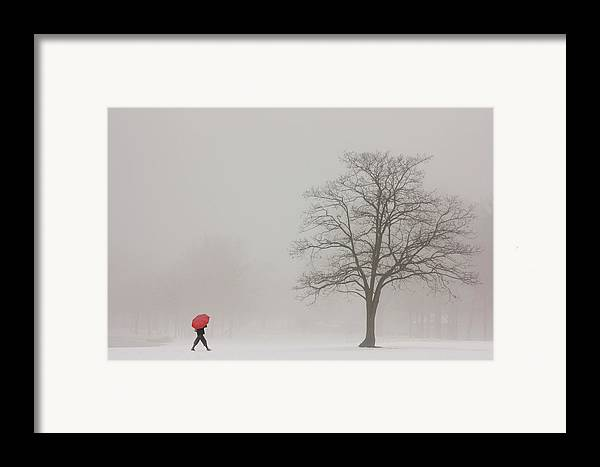 Snowy Winter Framed Print featuring the photograph A Shortcut Through The Snow by Tom York Images