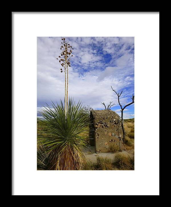 Tucson Framed Print featuring the photograph A Shrine In The Desert by Teresa Stallings