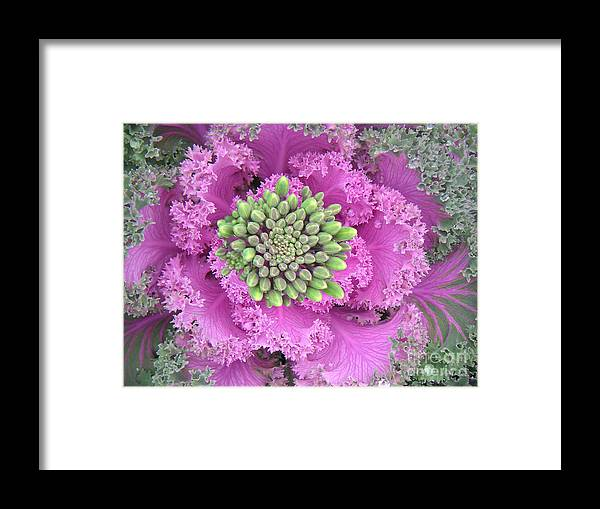 Nature Framed Print featuring the photograph A Study In The Shades Of Spring Three by Lucyna A M Green