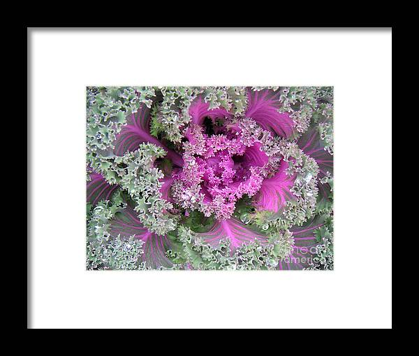 Nature Framed Print featuring the photograph A Study In The Shades Of Spring Two by Lucyna A M Green