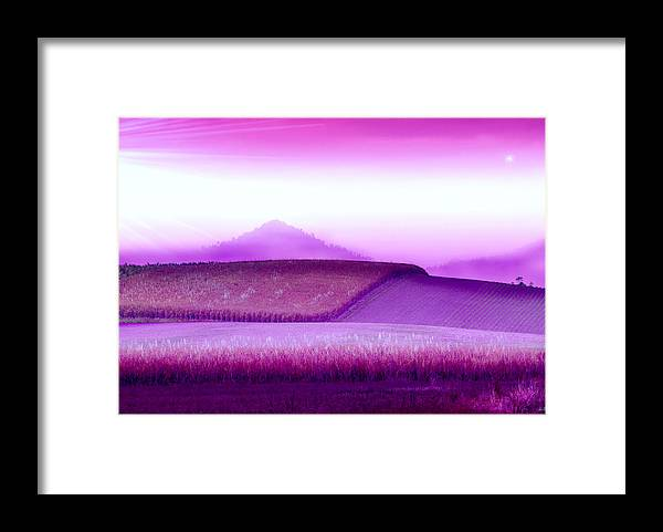 Landscapes Framed Print featuring the photograph A Sweet Harvest by Holly Kempe