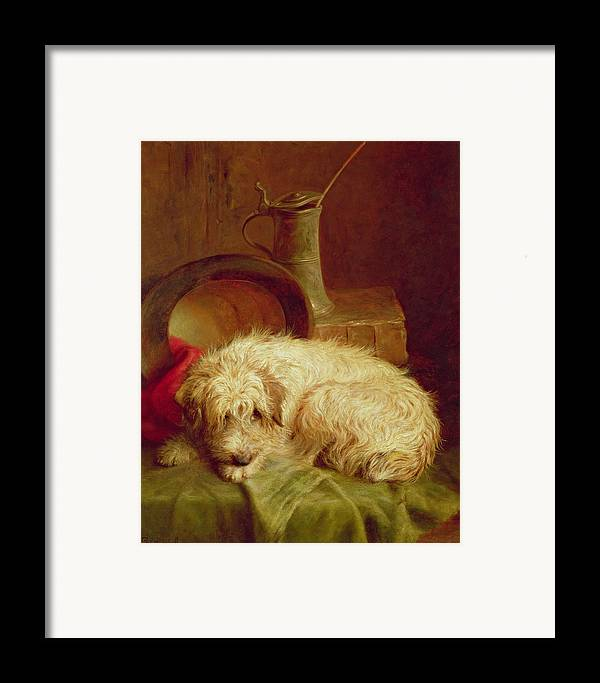 Terrier Framed Print featuring the painting A Terrier by John Fitz Marshall