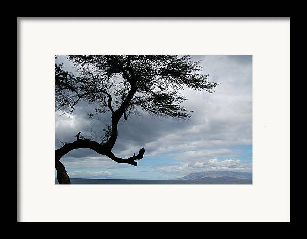 Hawaii Framed Print featuring the photograph A View From Maui by J D Banks