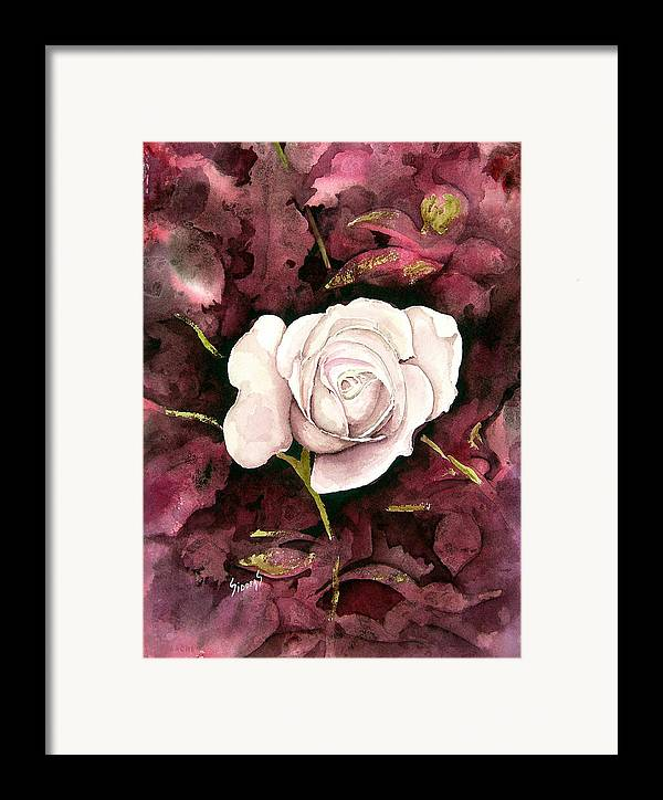 Flower Framed Print featuring the painting A White Rose by Sam Sidders