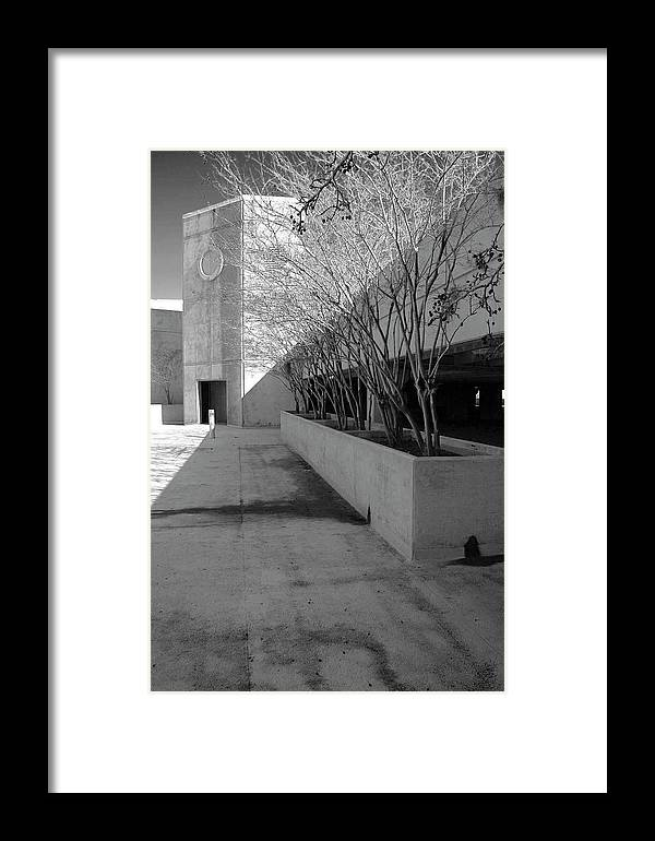 Black And White Photography Framed Print featuring the photograph A Winter's Day by Wayne Denmark
