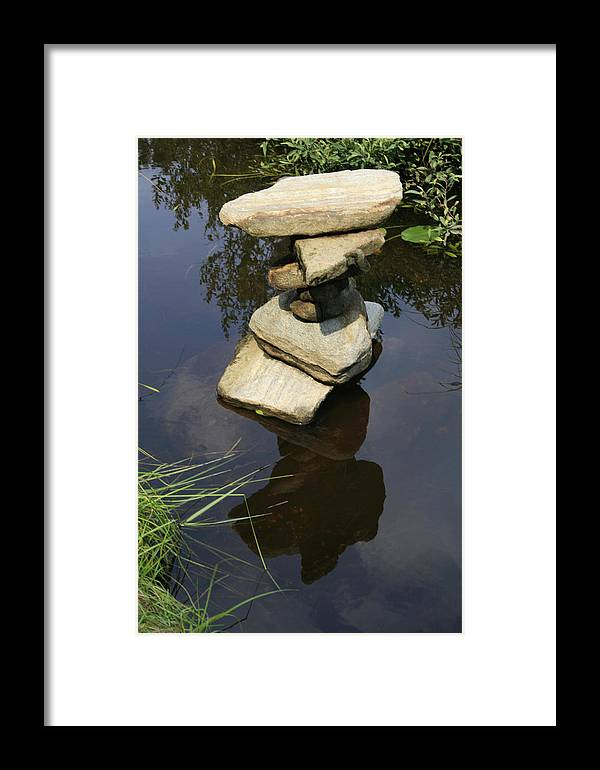 Nature Framed Print featuring the photograph Above And Below by Alan Rutherford