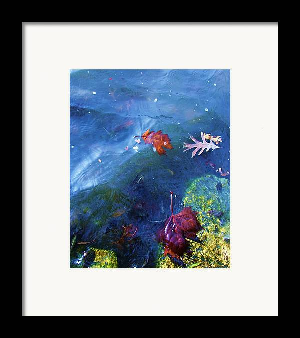 Abstract Water And Fall Leaves Framed Print featuring the photograph Abstract-10 by Todd Sherlock