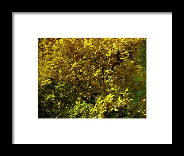 Abstract Framed Print featuring the photograph Abstract Autumn Pond Reflection by Juergen Roth