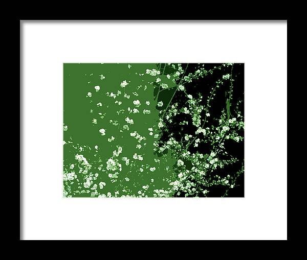 Blossoms Framed Print featuring the digital art Abstract Of Backyard Blossoms by Eric Forster