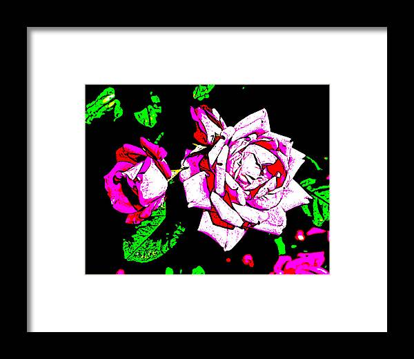 Abstract Framed Print featuring the digital art Abstract White Red And Pink Roses by Virginia Artist