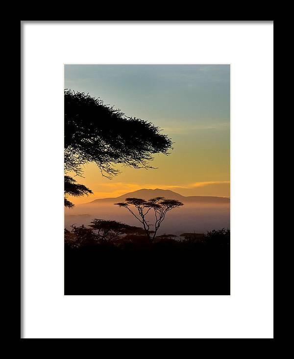 Africa Framed Print featuring the photograph Acacia Land by Remy Simon