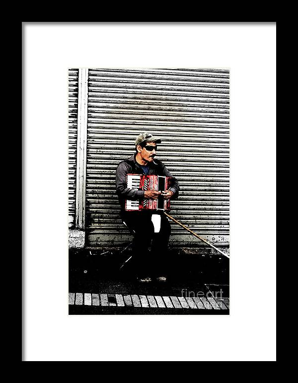 People Framed Print featuring the photograph Accordian Man by Alisha Robertson
