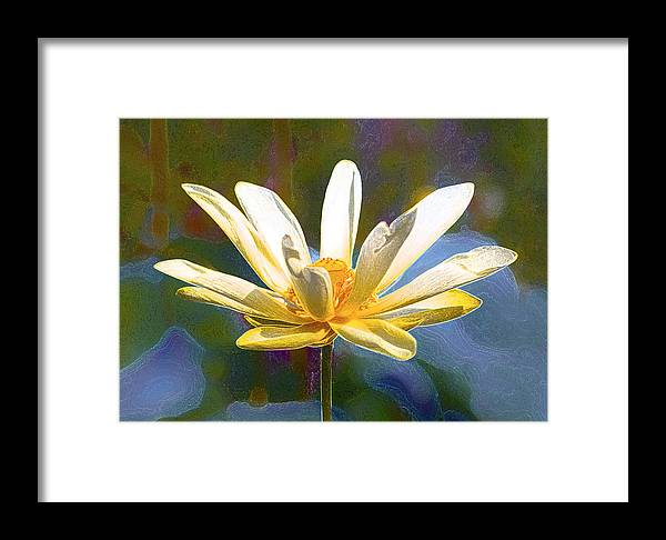 Fine Art Framed Print featuring the photograph Achievement Of Enlightenment The Golden Lotus by Darby Donaho