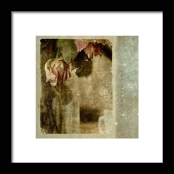 Flowers Framed Print featuring the photograph Ad Multos Annos by Inesa Kayuta