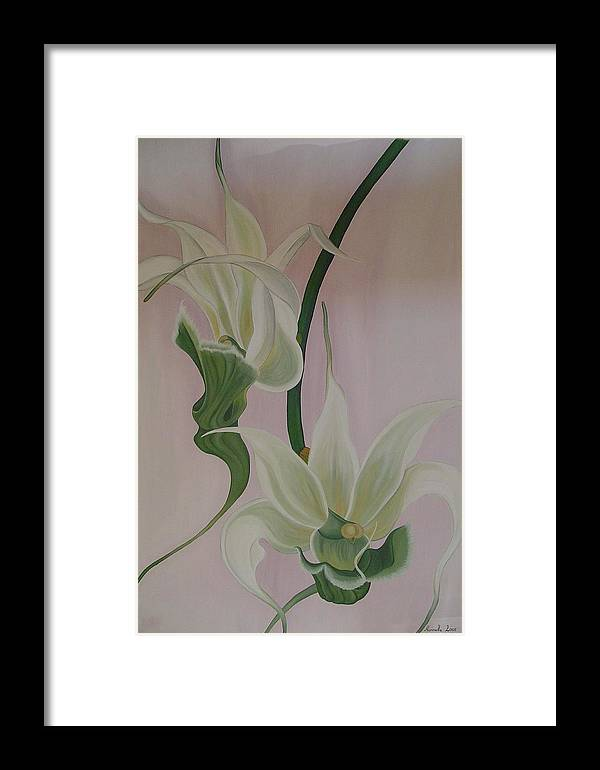 Marinella Owens Framed Print featuring the painting Aeranthes Peyrot Orchide by Marinella Owens