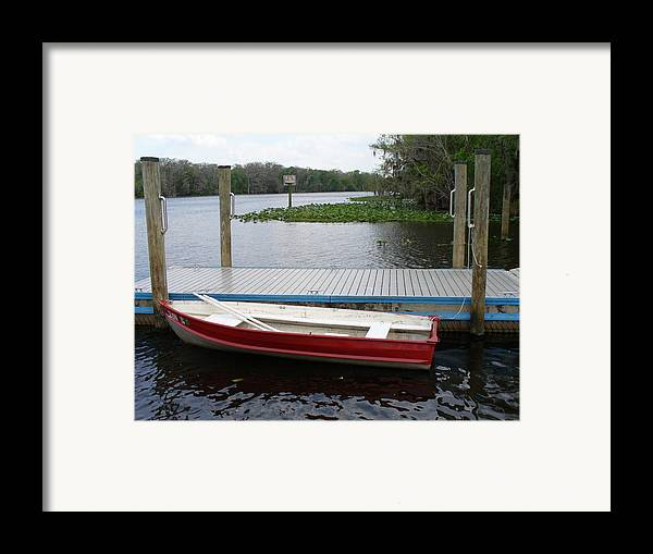 Water Framed Print featuring the photograph Afloat by Stephanie Richards