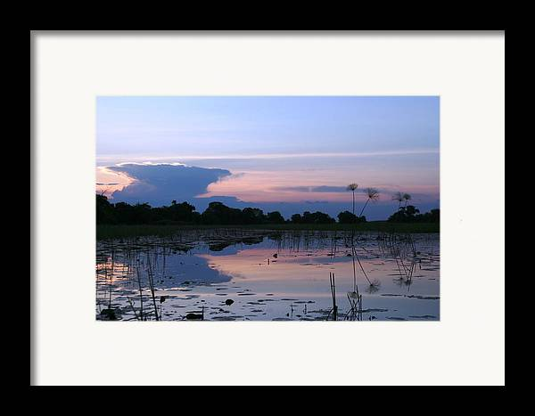 African Delta Framed Print featuring the photograph African Delta by Linda Russell