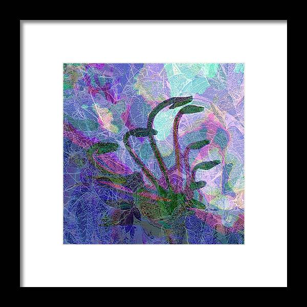 Abstract Plant Life Canvas Print Framed Print featuring the digital art After The Rain by Betty Pehme