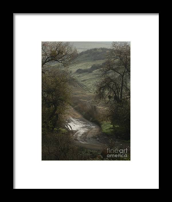 Country Road Framed Print featuring the photograph After The Rain by Robert Ball