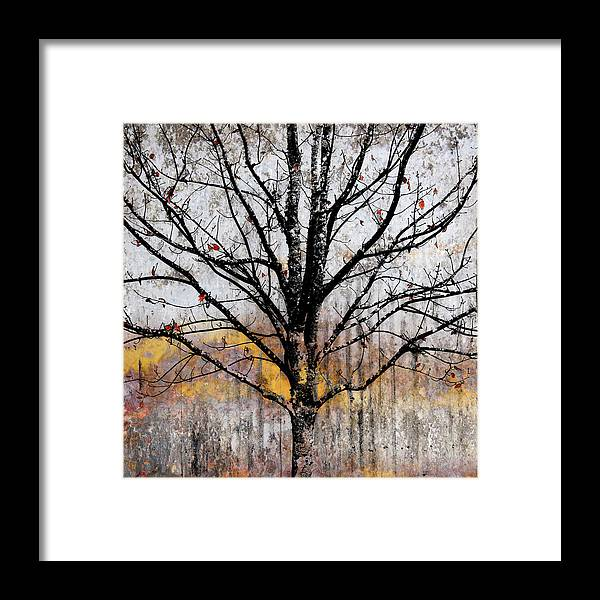 Tree Framed Print featuring the mixed media After The Wind by Carol Leigh