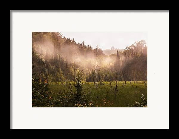 Algonquin Park Framed Print featuring the photograph Afternoon Mist by Linda McRae