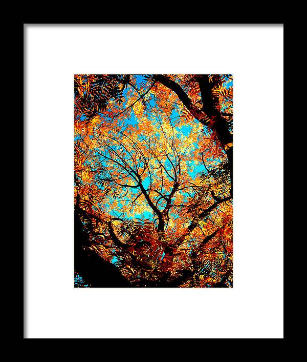 Trees Framed Print featuring the painting Afternoon by Tim Tanis