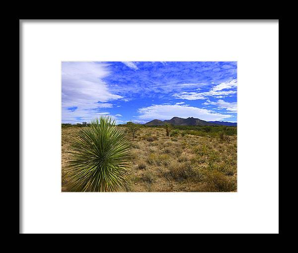 Tucson Framed Print featuring the photograph Agave And The Mountains 3 by Teresa Stallings