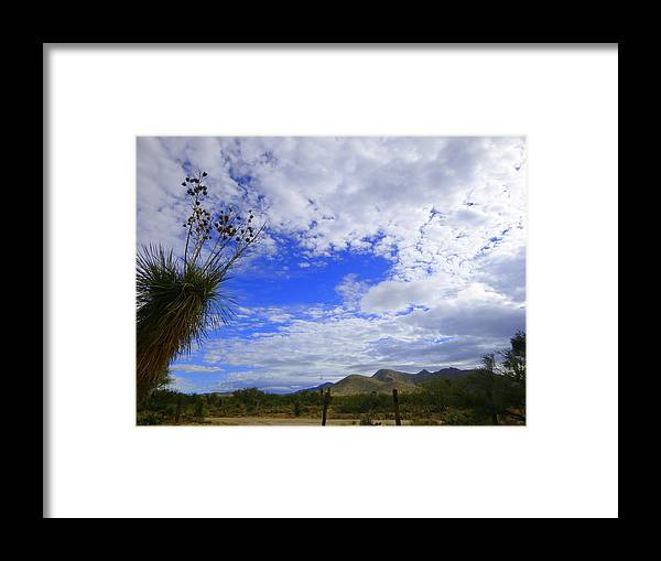 Tucson Framed Print featuring the photograph Agave And The Mountains by Teresa Stallings