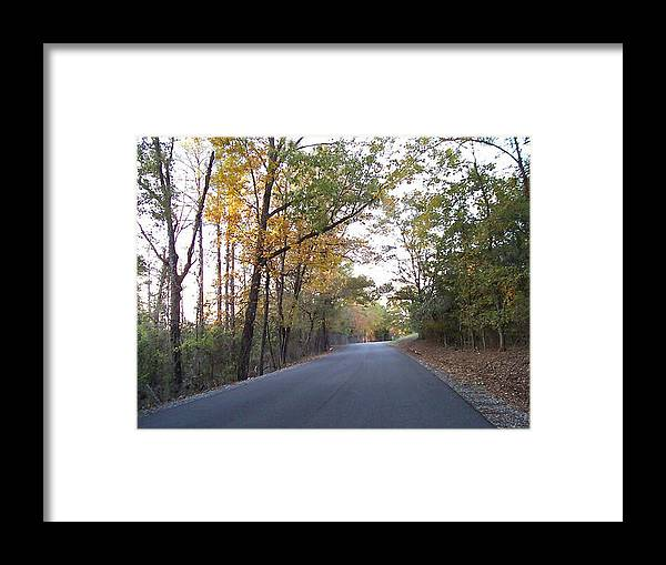 Road Framed Print featuring the photograph Alabama Backroads by Paula Ferguson