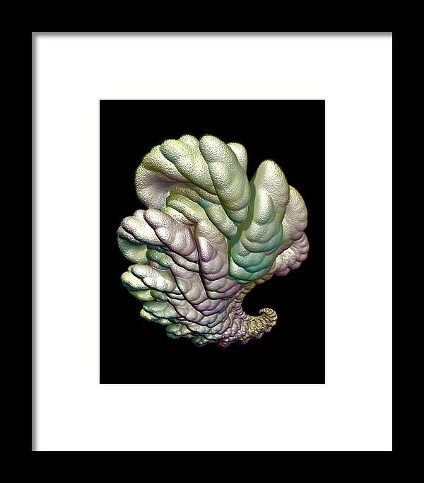 Fractal Framed Print featuring the digital art Alien Brain by Frederic Durville