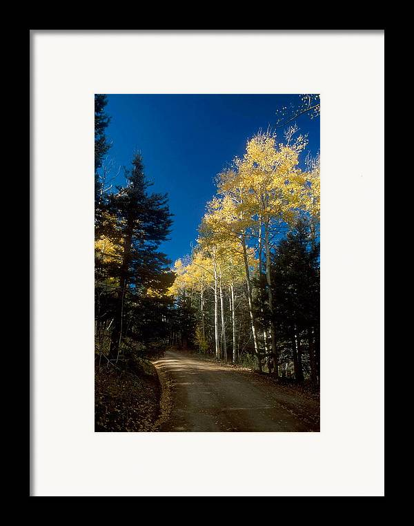 Landscape Framed Print featuring the photograph All Alone Garcia Park by Lynard Stroud