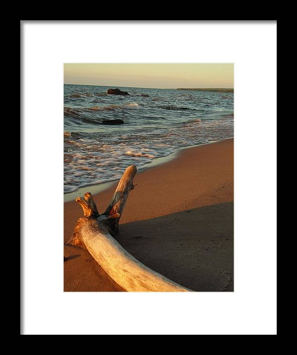 Beach Framed Print featuring the photograph All Alone by Peter Mowry